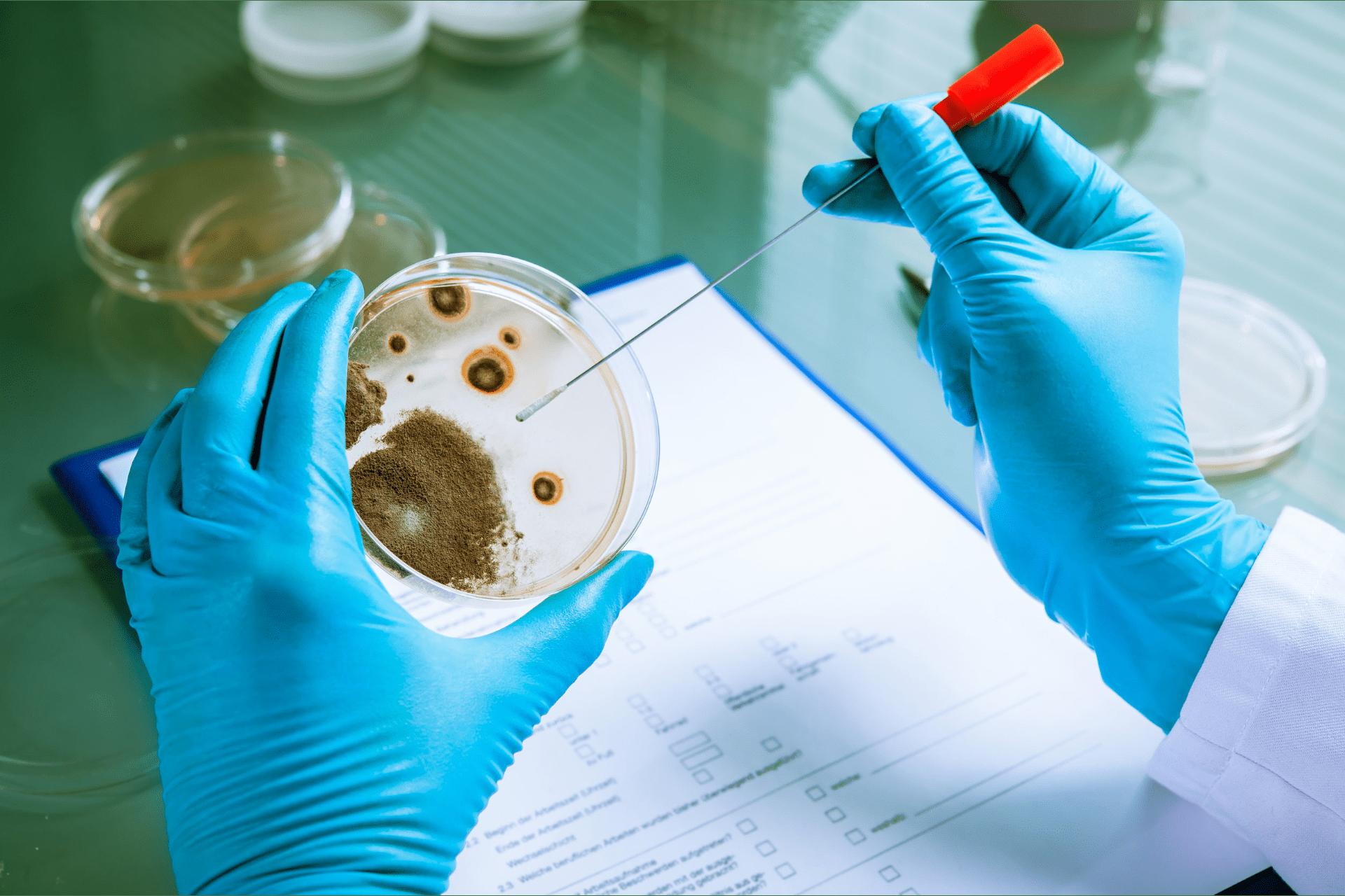 Listeria: prevención y control en la industria alimentaria