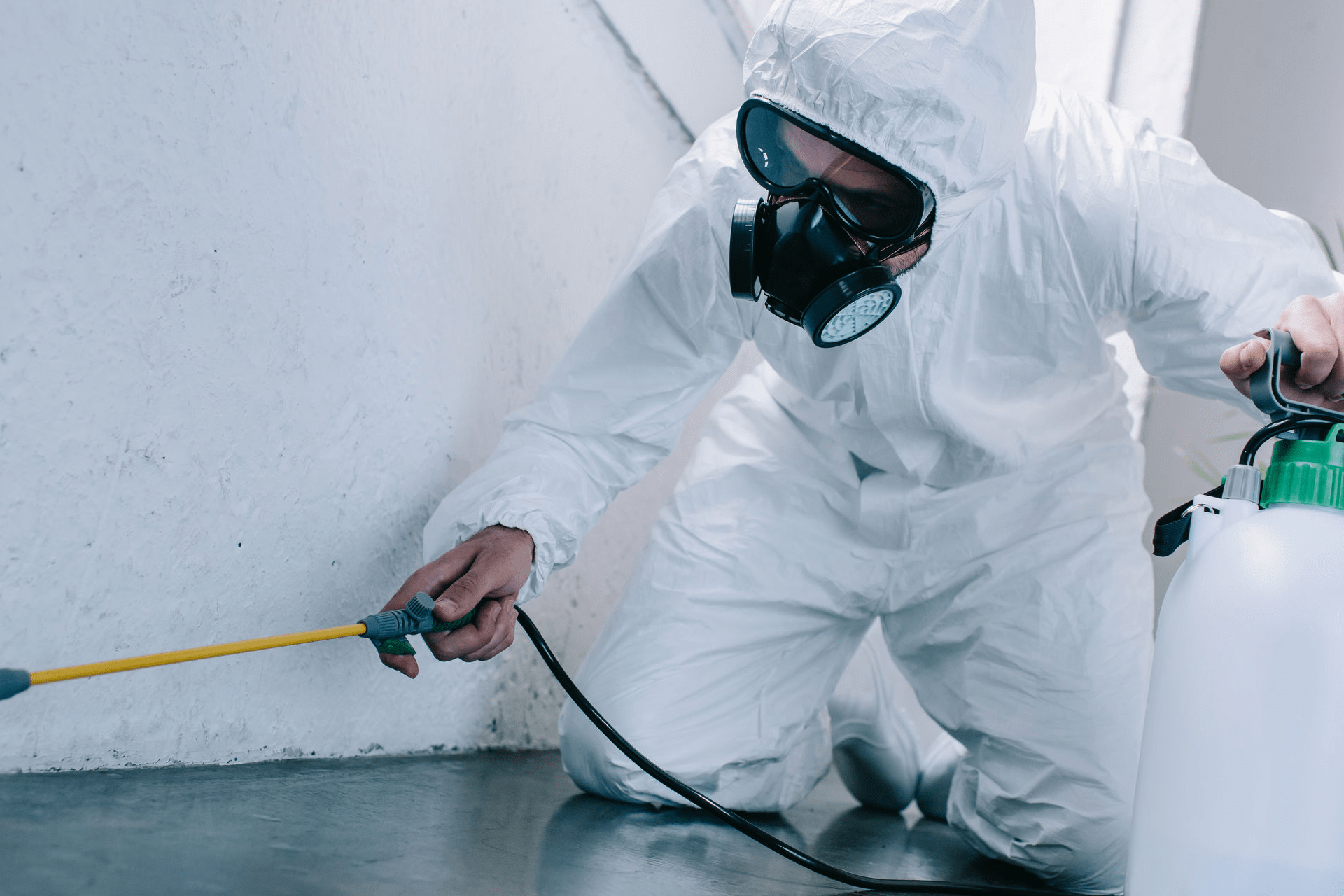 Biocidas de uso profesional